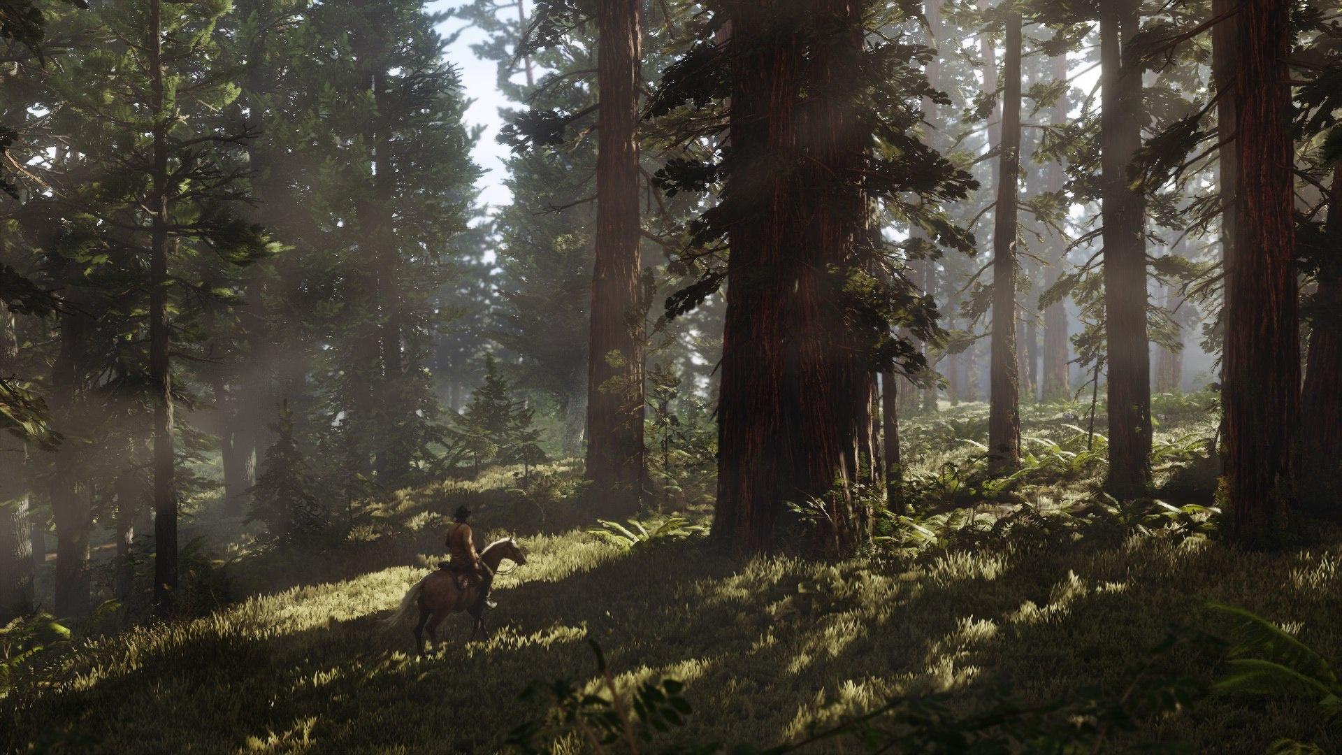 Обзор Red Dead Redemption 2. Лошадь моё всё.. Скриншот 2