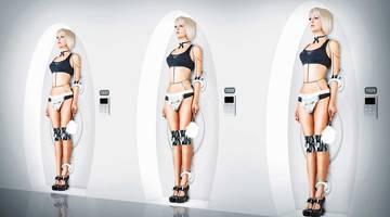 Робот — секс-игрушка будущего