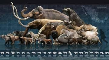 Возвращение вымерших видов