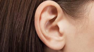 Исследователи лечат дефект уха путем выращивания имплантатов из клеток