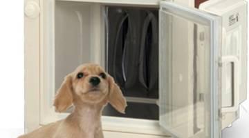 Будка оберегает собаку от теплового удара