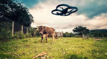 Краткий прогноз развития беспилотных дронов