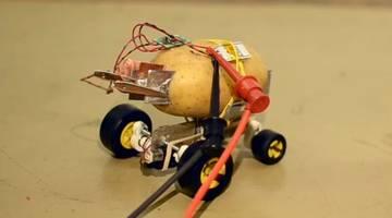#видео   Житель Польши построил самоуправляемого робота из картофелины
